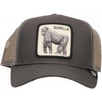 Accessoires textile Homme Casquettes Goorin Bros KING OF THE JUNGLE grey