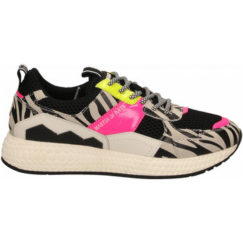 Chaussures Femme Baskets basses Moa Concept FUTURA BLACK MESH zebra