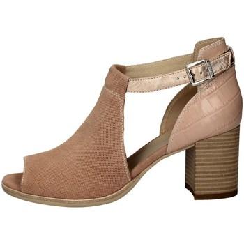 Chaussures Femme Sandales et Nu-pieds Nero Giardini E010251D ROSA