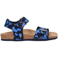 Chaussures Garçon Sandales et Nu-pieds Geox J926XA 000CE J STORM Azul