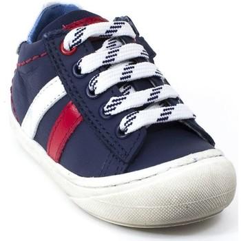 Chaussures Garçon Baskets basses Stones And Bones Baskets cuir CNIP bleu