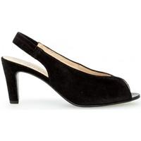 Chaussures Femme Sandales et Nu-pieds Gabor Sandales daim talon  lxv recouvert Noir