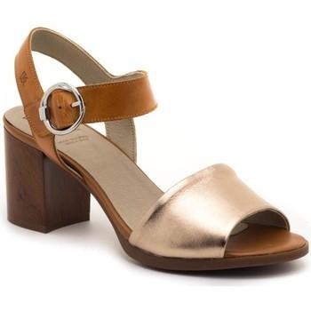 Chaussures Femme Sandales et Nu-pieds Dorking D8174-LATQ Marron