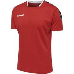Vêtements T-shirts manches courtes Hummel Maillot  Authentic Poly HML rouge