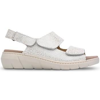 Chaussures Femme Sandales et Nu-pieds Saguy's SAGALES SAGUYS POUR GABARITS W LERMA BEIGE