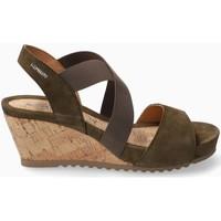 Chaussures Femme Sandales et Nu-pieds Mephisto Sandale velours GIULIANA Vert