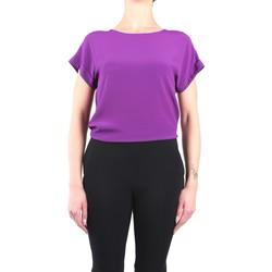 Vêtements Femme Tops / Blouses Jucca J3112020 Chemisiers Femme cyclamen cyclamen