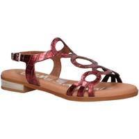 Chaussures Femme Sandales et Nu-pieds Oh My Sandals 4655-BR113 Rojo