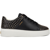 Chaussures Baskets basses Ed Hardy Stud-ed low top black/gold Noir