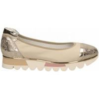 Chaussures Femme Ballerines / babies Le Pepé CERVO beige