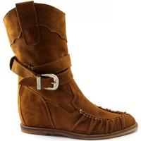 Chaussures Femme Bottes ville Divine Follie DIV-E20-700-CU Marrone