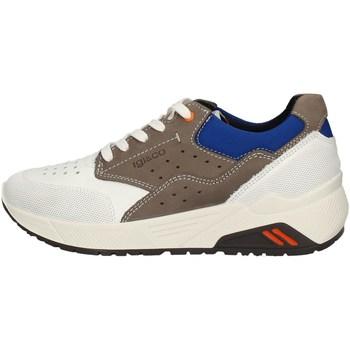 Chaussures Homme Baskets basses IgI&CO 51320/00 BLANC