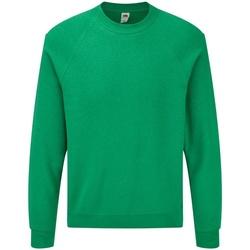 Vêtements Homme Sweats Fruit Of The Loom Raglan Vert chiné