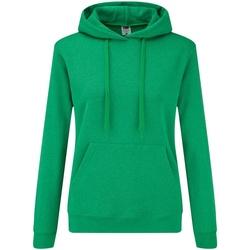 Vêtements Femme Sweats Fruit Of The Loom Hooded Vert chiné
