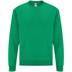 Vêtements Homme Sweats Fruit Of The Loom 62202 Vert chiné