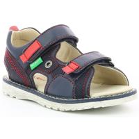 Chaussures Garçon Sandales et Nu-pieds Kickers Pepper MARINE