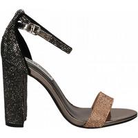 Chaussures Femme Sandales et Nu-pieds Steve Madden CARRSON-R pewter-multi
