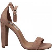 Chaussures Femme Sandales et Nu-pieds Steve Madden FRANKY SUEDE mauve