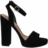 Chaussures Femme Sandales et Nu-pieds Steve Madden GESTURE SUEDE black