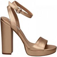 Chaussures Femme Sandales et Nu-pieds Steve Madden GESTURE rose-gold