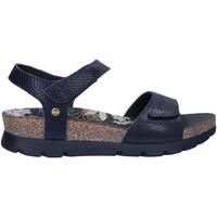 Chaussures Femme Sandales et Nu-pieds Panama Jack SCARLETT AMAZONIC B1 Azul