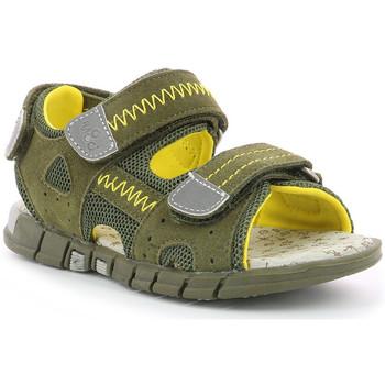 Chaussures Garçon Sandales et Nu-pieds Mod'8 Tribath KAKI