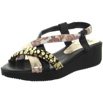 Chaussures Femme Sandales et Nu-pieds Marila Sandales plates  ref_48942 Multi noir