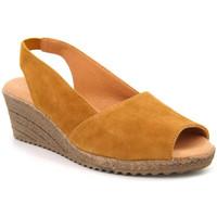 Chaussures Femme Sandales et Nu-pieds Kaola 191 jaune