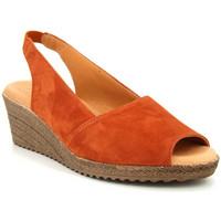 Chaussures Femme Sandales et Nu-pieds Kaola 191 Multicolor