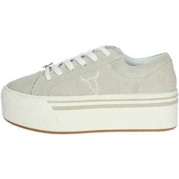 Chaussures Femme Baskets basses Windsor Smith SHADY Gris glace