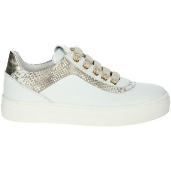 Chaussures Fille Baskets basses Le Petit Bijou 6430LPB Blanc/Or