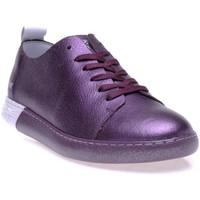 Chaussures Femme Baskets basses Pantone 8018203 Violet