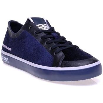 Chaussures Femme Baskets basses Pantone 8018601 Bleu