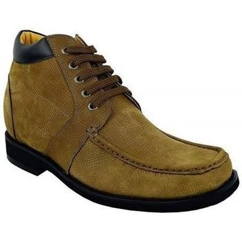 Chaussures Boots Zerimar COPENHAGUE Marron
