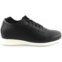 Chaussures Baskets basses Zerimar BRIDGETOWN Noir