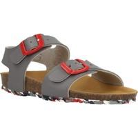 Chaussures Garçon Sandales et Nu-pieds Garvalin 202475 Gris