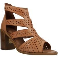 Chaussures Femme Sandales et Nu-pieds Carmela 67133C Marron