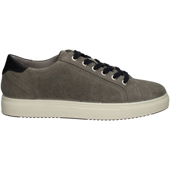Chaussures Homme Baskets basses Imac 502791 GRIS