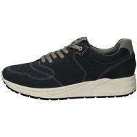 Chaussures Homme Baskets basses Imac 503020 BLEU