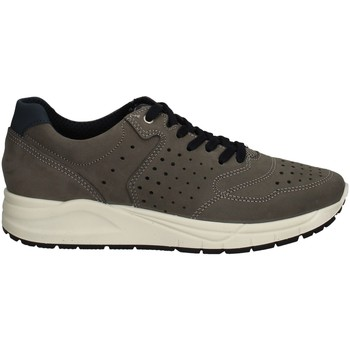 Chaussures Homme Baskets basses Imac 503020 GRIS