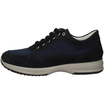 Chaussures Homme Baskets basses Imac 501601 BASKETS Homme BLEU BLEU
