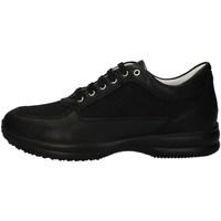 Chaussures Homme Baskets basses Imac 501600 NOIR