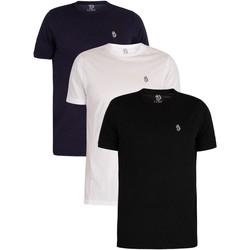 Vêtements Homme T-shirts manches courtes Luke 1977 Lot de 3 t-shirts Johnys multicolore