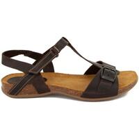Chaussures Femme Sandales et Nu-pieds Interbios 4462 PIEL MOKA Bios