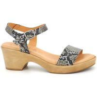 Chaussures Femme Sandales et Nu-pieds Kaola 710 Multicolor
