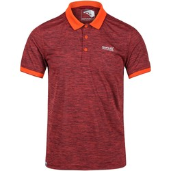 Vêtements Homme Polos manches courtes Regatta Polo Homme REMEX II Orange
