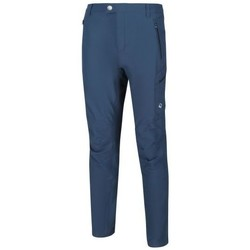 Vêtements Homme Pantalons Regatta Pantalon technique HIGHTON Bleu