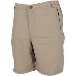 Vêtements Homme Shorts / Bermudas Regatta Leesville ii beige short Sable