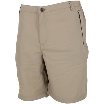 Vêtements Homme Shorts / Bermudas Regatta Leesville ii beige short Sable