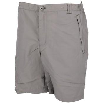 Vêtements Homme Shorts / Bermudas Regatta Leesville ii grs short Gris clair